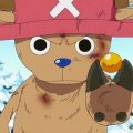 one-piece-tony-tony-chopper-31